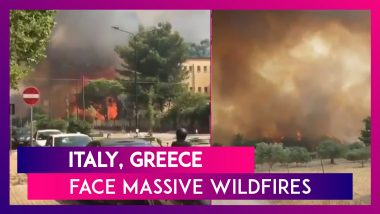 Italy, Greece Face Massive Wildfires As Mediterranean Region Hit By Record Heatwave