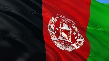World News | Afghanistan: Resources Worth USD1000 Billion Under Taliban's Threat