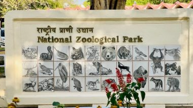 Delhi Zoo, After Being Closed for 105 Days, Reopens in Two Shifts With Online Ticket Booking Facility