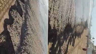 Mumbai: After Oil Spill Reported at Juhu Beach, BMC Starts Cleaning Process (Watch Video)