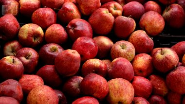 Himachal Pradesh Apple Rates: Adani Group Announces Price For Procuring The Fruit For Its CA Stores; Farmers Express Disappointment