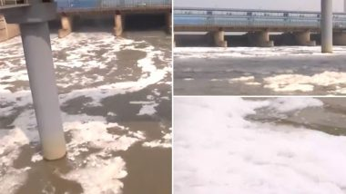 Delhi: Layer of Toxic Foam Continues To Float on Surface of Yamuna River (Watch Video)
