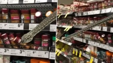 Sydney Woman Spots 3-Metre Long Python in Spice Section of Supermarket, Grabs and Releases It Into Bush (Watch Video)