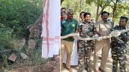 Sridhar Vembu, CEO of Zoho Corporation, Encounters 12-Foot-Long King Cobra In Tamil Nadu Village
