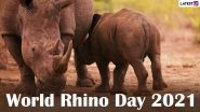 World Rhino Day 2021: Netizens Share Quotes, Messages and Images to Raise Awareness About the Species and Their Conservation