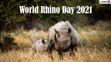 World Rhino Day 2021 Date and Theme: Know the Significance of the Day Raising Awareness of All Five Rhino Species