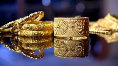Tamil Nadu: Techies Return Gold Jewellery Found on Road to Owner Through Police, Earn Praise