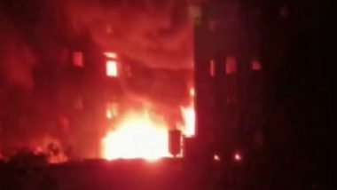 Maharashtra Fire: Blaze Erupts at Chemical Factory in Palghar