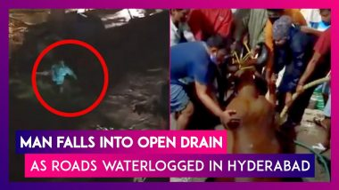 Hyderabad: Man Falls Into Open Drain As Roads Waterlogged; Ox Rescued From Open Water Sump