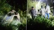 Sloth Bear Shot Dead by Forest Officials in Uttarakhand's Chamoli (Watch Video)