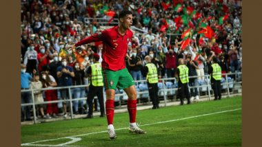 Cristiano Ronaldo Almost Scored 'Puskas Winning Goal' Against Luxembourg, Check Video