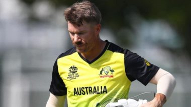 David Warner Receives Backing From Brett Lee, Says Dropped Sunrisers Hyderabad Player Was Not Even Allowed To Go the Stadium During IPL 2021