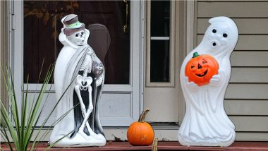 From Jack-o'-Lantern to Spider Web, Halloween 2021 Decorations!